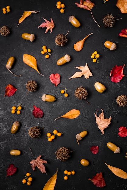 松ぼっくりとどんぐりと秋の要素のトップビュー Premium写真