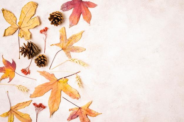 Вид сверху осенних листьев с сосновыми шишками и копией пространства Premium Фотографии