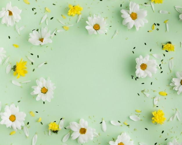 Вид сверху красивой цветочной концепции Premium Фотографии
