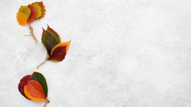 아름다운 가을의 상위 뷰 복사 공간 및 문자열 나뭇잎 무료 사진