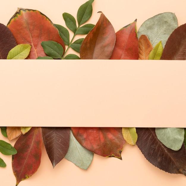 Вид сверху красочные осенние листья Premium Фотографии