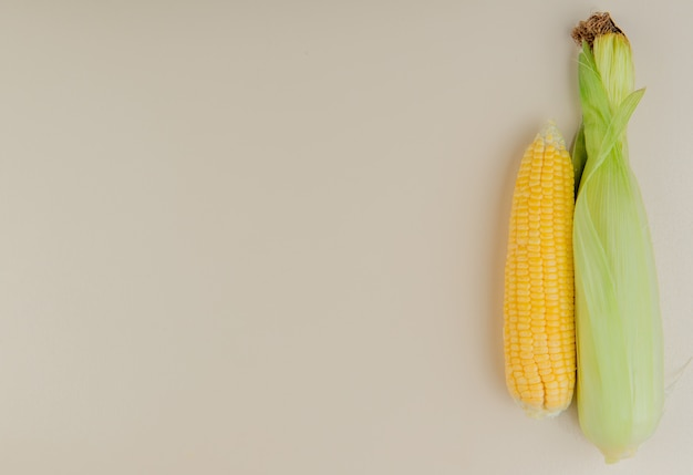 右側にトウモロコシの穂軸とコピースペースを持つ白のトップビュー 無料写真
