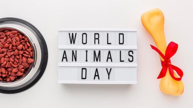 Вид сверху на миску с косточкой и световым коробом на день животных Бесплатные Фотографии