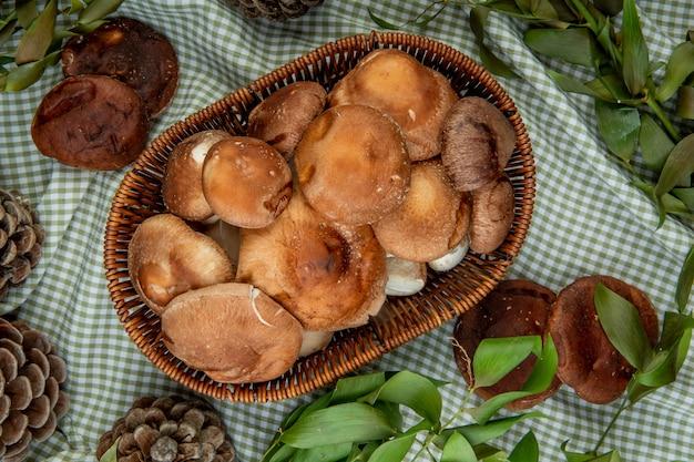 Вид сверху свежих грибов в плетеной корзине и шишек с зелеными листьями на клетчатой ткани Бесплатные Фотографии