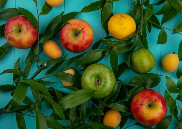 水色の表面に葉レモンとアプリコットと緑と赤のリンゴのトップビュー 無料写真