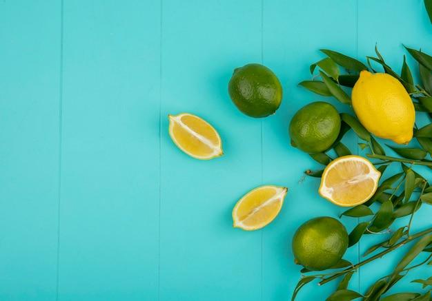 青い表面に葉を持つ緑と黄色のレモンのトップビュー 無料写真