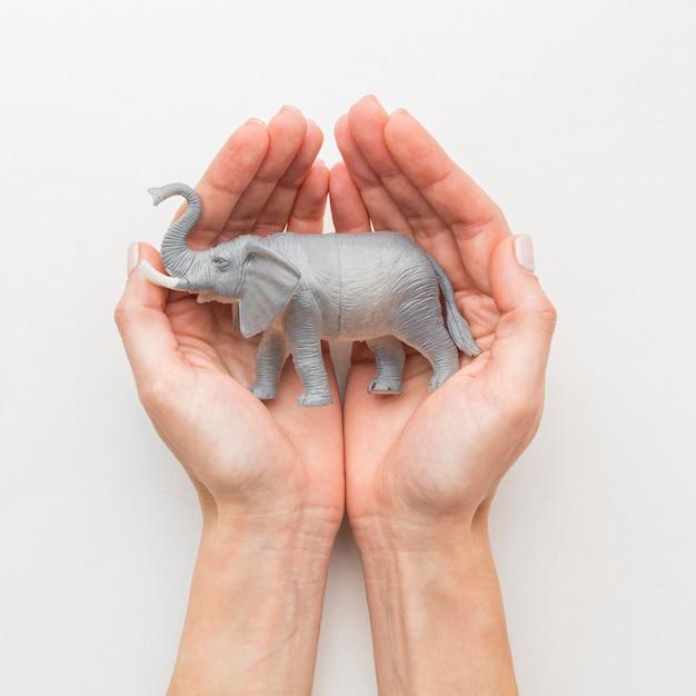Вид сверху на руки, держащие фигурку слона на день животных Бесплатные Фотографии