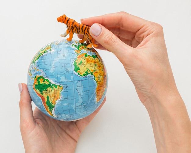 Вид сверху на руки, держащие планету земля и фигурку тигра на день животных Бесплатные Фотографии