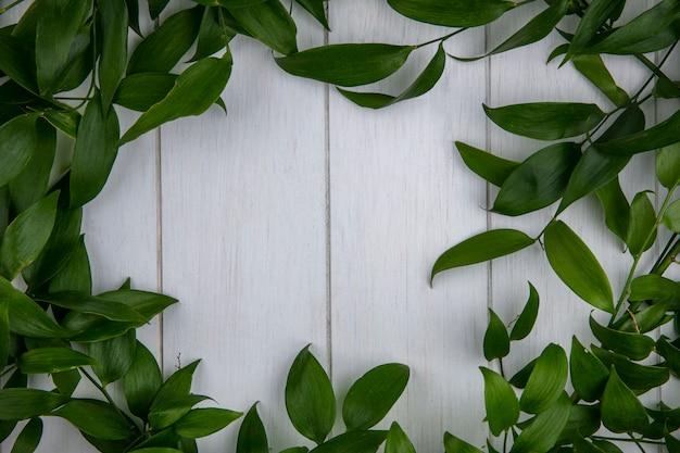 灰色の表面に葉の枝の上から見る 無料写真