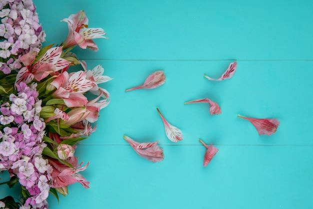 Вид сверху светло-розовых цветов с лепестками на голубой поверхности Бесплатные Фотографии