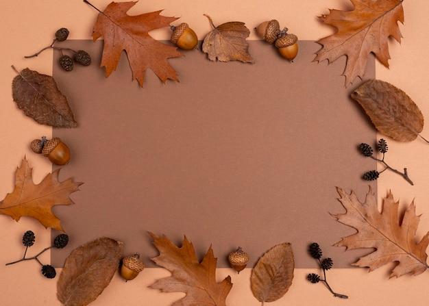 Вид сверху монохроматического выбора рамки листьев Бесплатные Фотографии