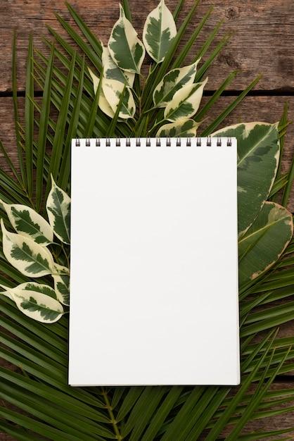 식물 잎에 노트북의 상위 뷰 무료 사진