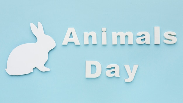 Вид сверху бумажного кролика на день животных Бесплатные Фотографии