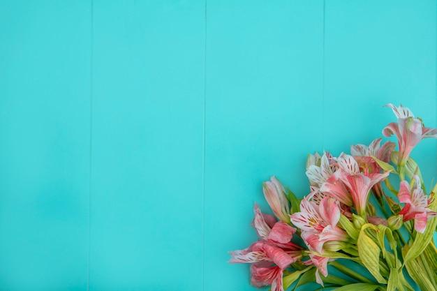 青い表面にピンクのユリのトップビュー 無料写真