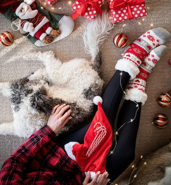 彼女の犬と一緒にクリスマスを祝う面白い靴下で女性の上面図 Premium写真