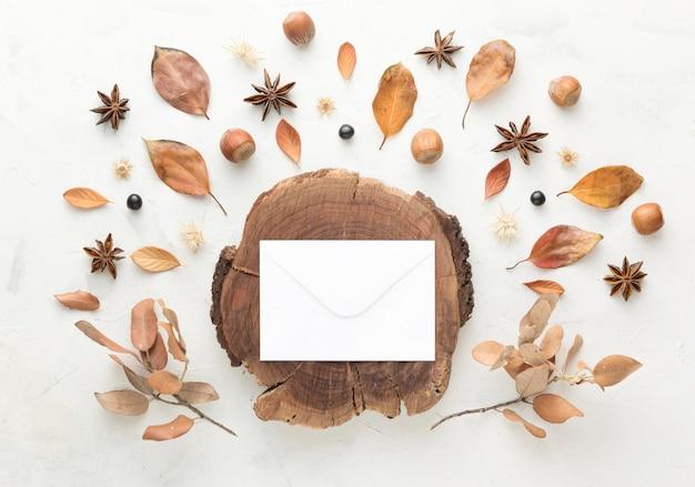 紅葉とコピースペースと木の上面図 無料写真