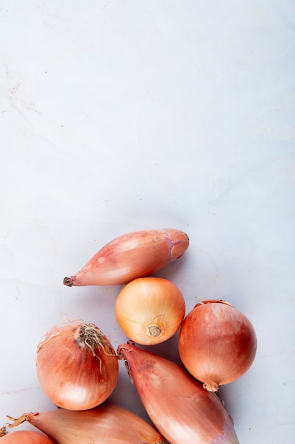 Top view of onions and shallots on white background with copy space Free Photo