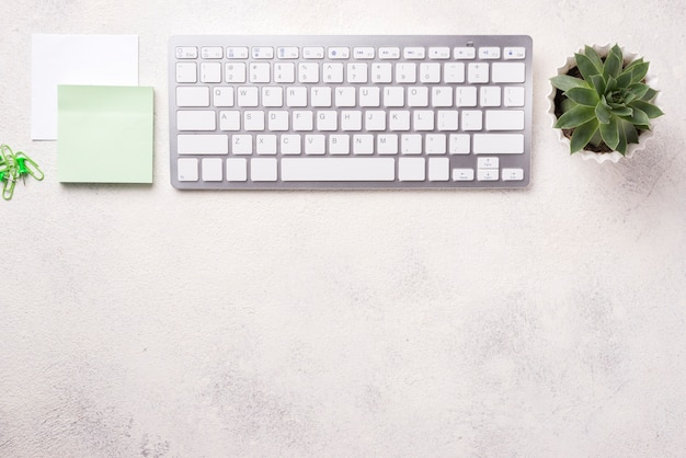 Top view of organized desk with keyboard and succulent plant Free Photo