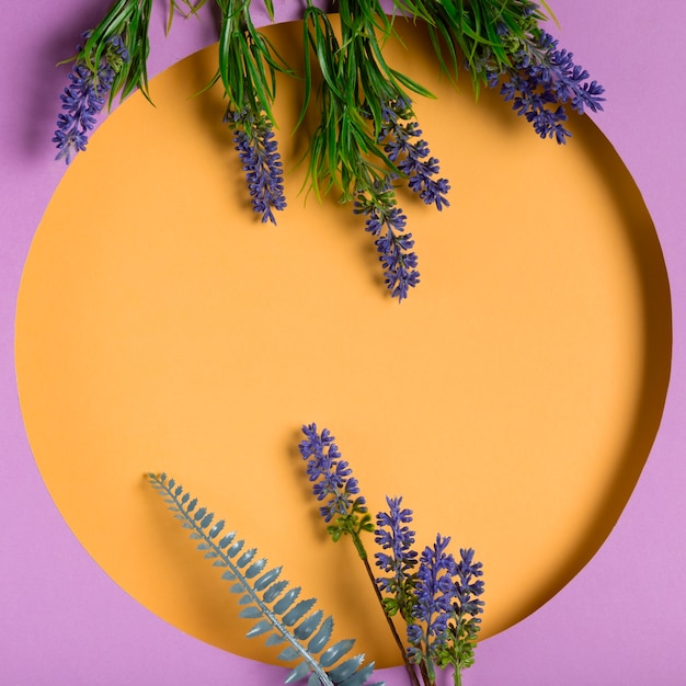 Top view paper circle with lavender beside Free Photo