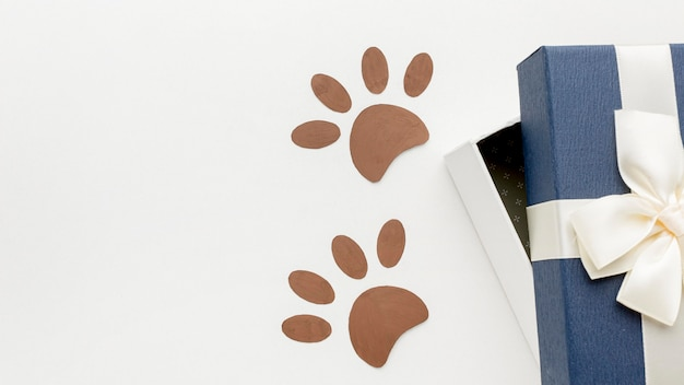 Top view of paw prints with gift for animal day Free Photo