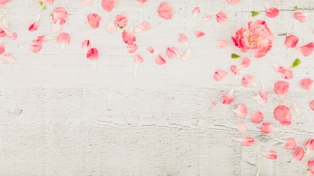 Top view petals on wooden background Free Photo