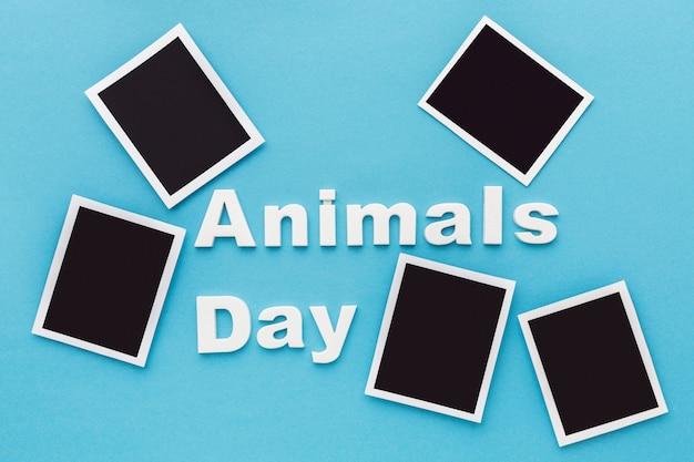 Vista dall'alto delle foto per la giornata degli animali Foto Gratuite