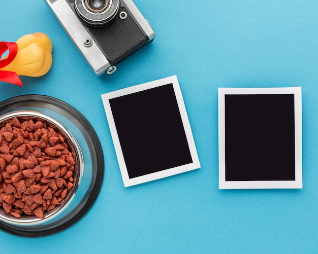 Top view of photos and animal food with camera for animal day Free Photo