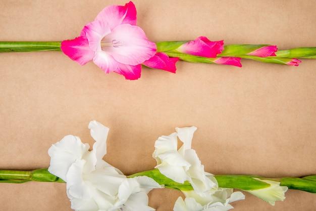 Vista superiore dei fiori rosa di gladiolo di colore isolati sul fondo di struttura della carta marrone Foto Gratuite
