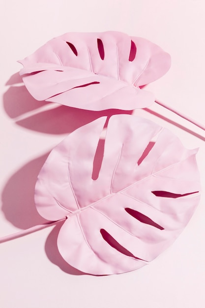 Top view pink palm leaves Free Photo