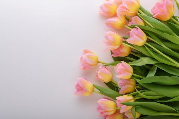 コピースペースと白い背景の上の黄色がかったピンクのチューリップの上面図 Premium写真