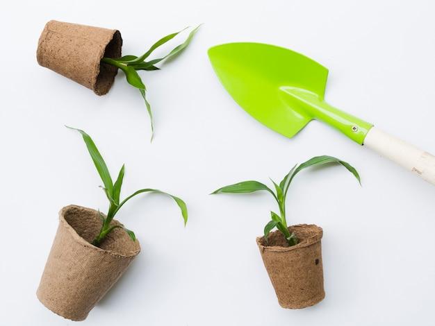 シャベルでトップビューの植物 無料写真