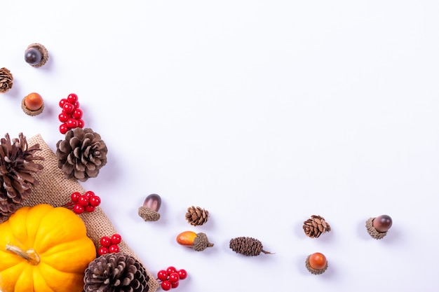 Top view of pumpkin, red berries and pine cones Premium Photo