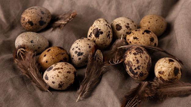 Вид сверху перепелиные яйца и перья Бесплатные Фотографии