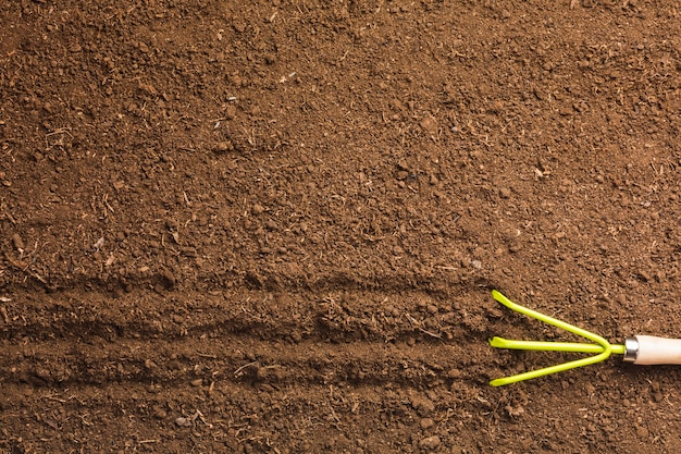 Top view of a rake on the ground Premium Photo