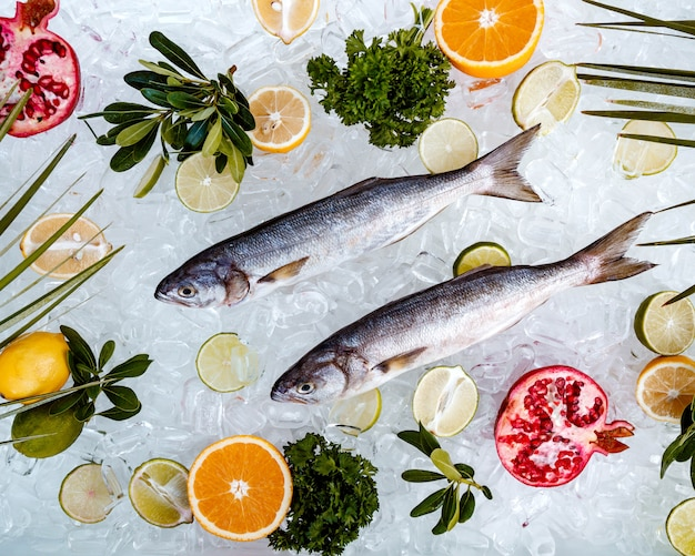 Top view of raw fish placed on ice surrounded with fruit slices _ Free Photo