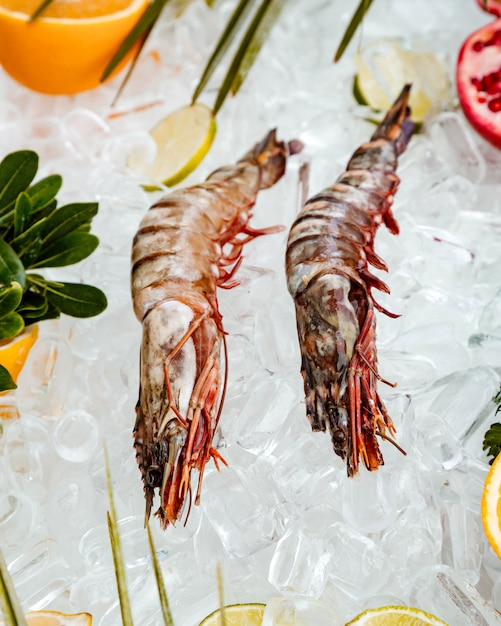 Top view of raw prawns placed on ice surrounded with fruit slices Free Photo