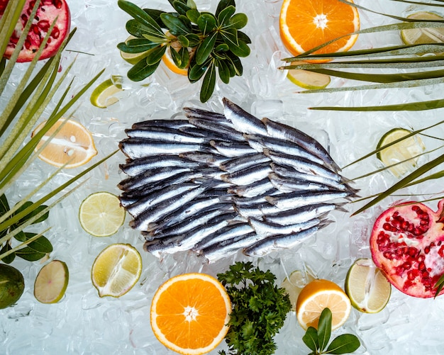 Top view of raw sprats placed on ice surrounded with fruit slices Free Photo