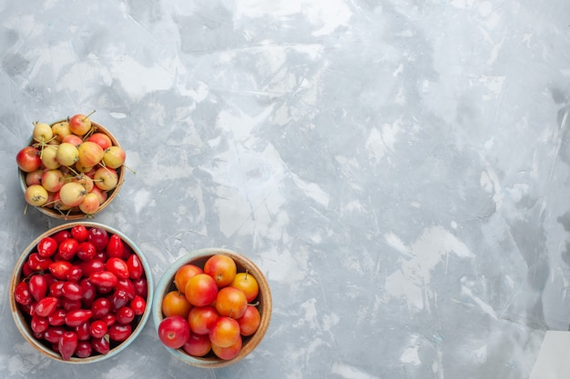 Top view red dogwoods with cherry-plums and cherries on light desk Free Photo