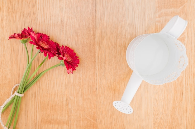 Top view red flowers and watering can on wooden background Free Photo
