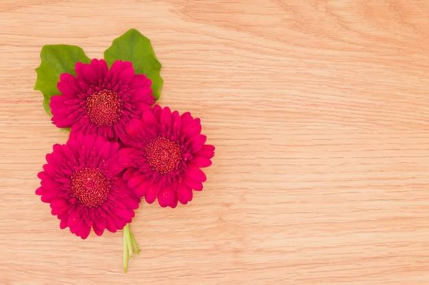 Top view red flowers on wooden background Free Photo