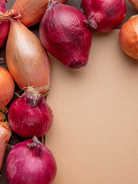 Top view of shallot and red onions with copy space Free Photo
