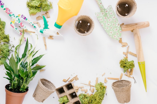 Top view of shovel; gardening fork; peat pot; potted plant; moss and spray bottle over white background Free Photo
