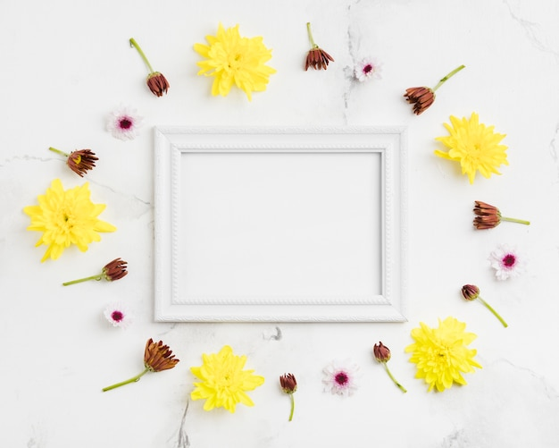 Top view of spring daisies and frame with marble background Free Photo
