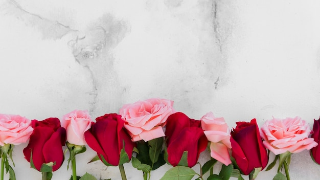 Top view of spring roses with marble background Free Photo