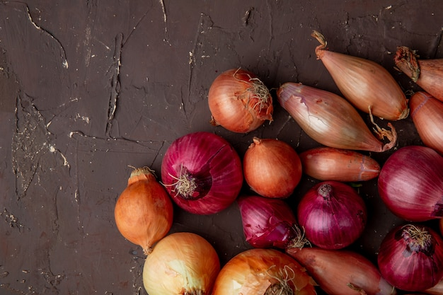 Top view of sweet yellow red and shallot onions on maroon background with copy space Free Photo