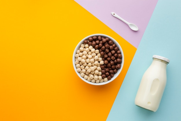 Top view tasty cereal bowl and milk Free Photo