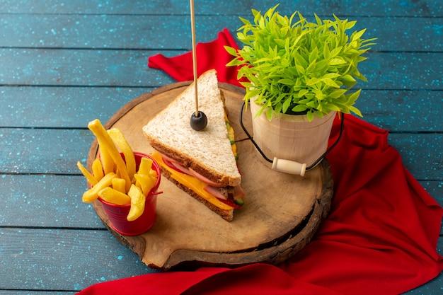 Vista dall'alto gustoso panino con formaggio prosciutto all'interno con patatine fritte e pianta verde sul pasto di cibo panino scrivania in legno blu Foto Gratuite