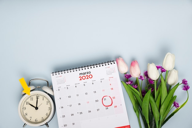 Top view tulips beside calendar and clock Free Photo