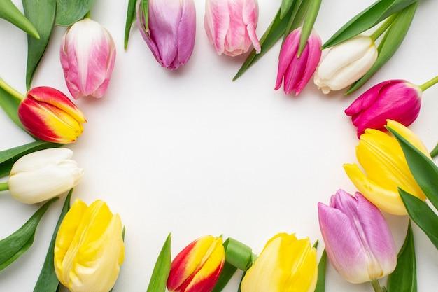 Рамка с цветами тюльпанов Бесплатные Фотографии