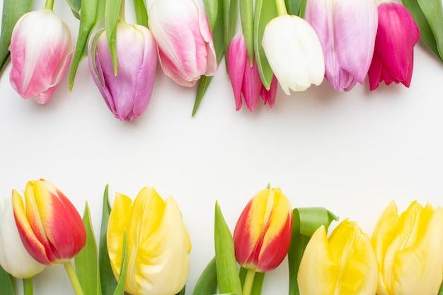 Вид сверху тюльпаны цветы Бесплатные Фотографии